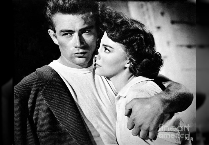 rebel without a cause essays
